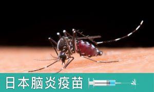 日本脑炎疫苗