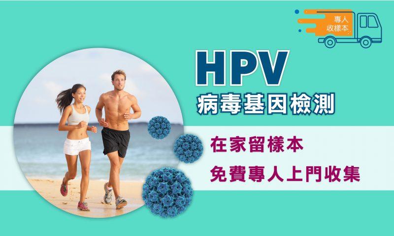 hpv 病毒